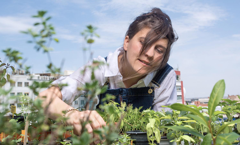 blueyellow: ciencia y magia de plantas aromáticas